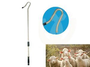 bastone-per-pecore