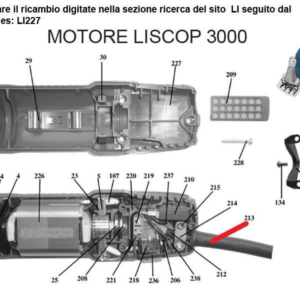 LI213